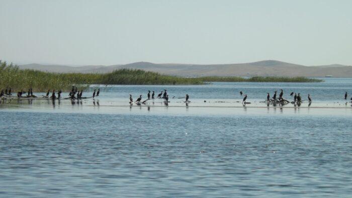 айдаркуль озеро