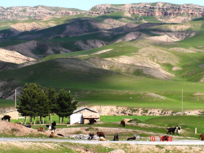 Сурхандарьинская Долина